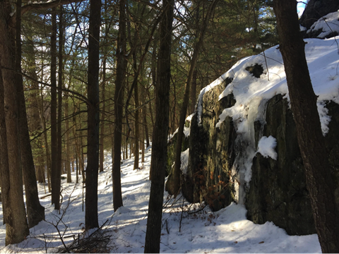 a large ice covered boulder alongside the trail.  Photo credit: Lisa Sullivan