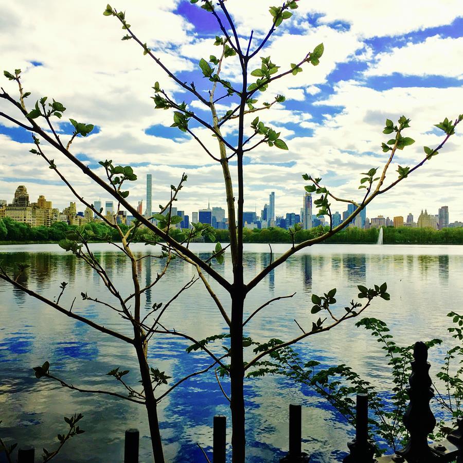 the Reservoir ~ Central Park