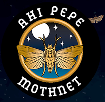 Ahi Pepe MothNet