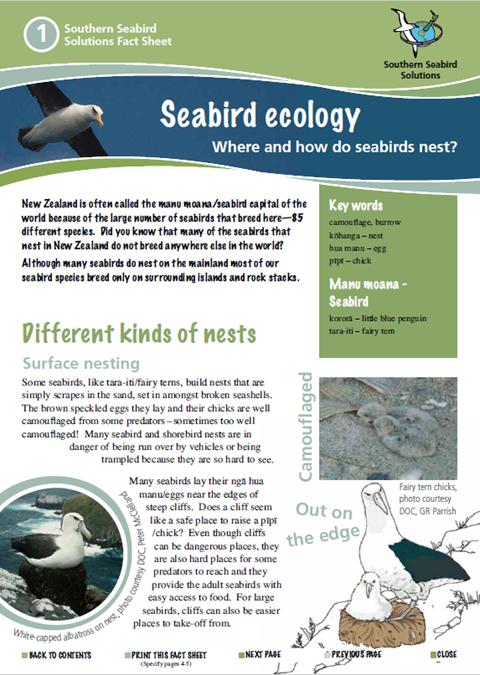 Seabird Factsheets