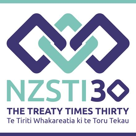 NZSTI30 Logo