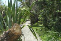 Grovetown Lagoon track