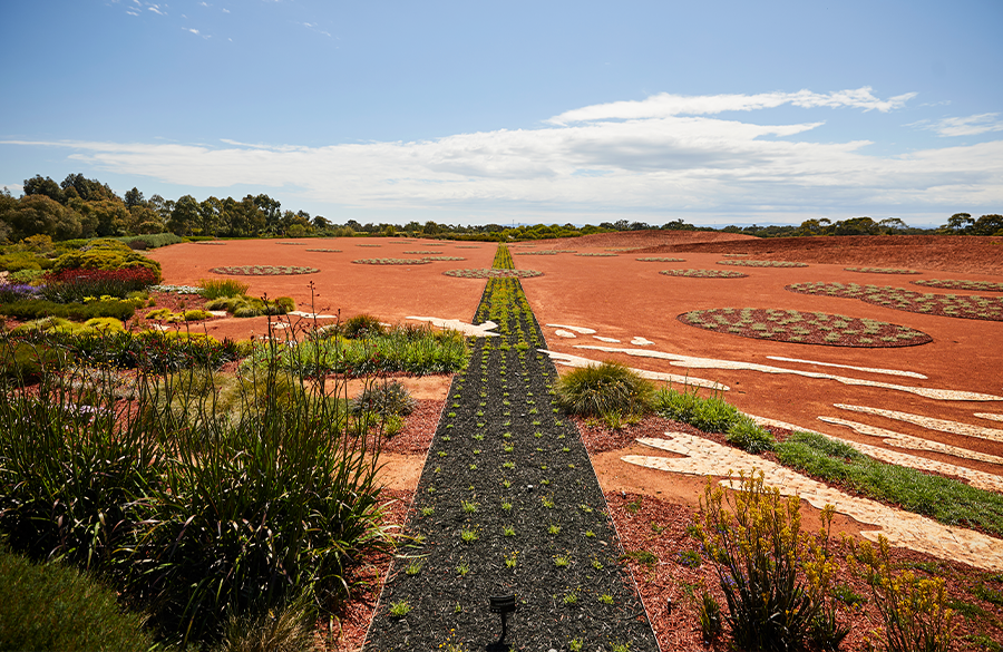 Experience the best of Cranbourne Gardens in 2021.