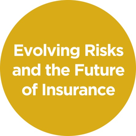 Evolving Risks and the Future of Insurance
