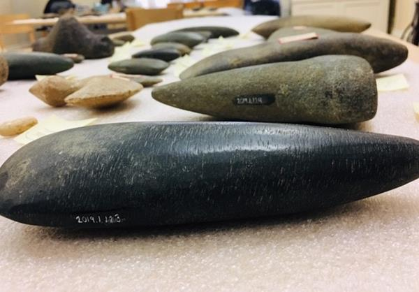 Image of ground stone Celts from Puerto Rico with their new numbers