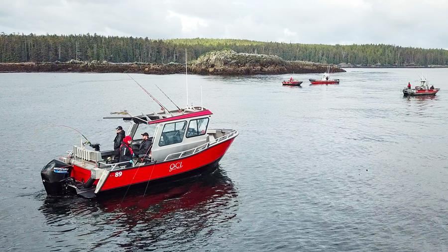 The QCL 80-Series boat from Bridgeview Marine