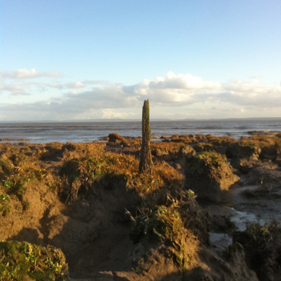View over the mudflats