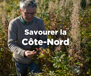 Savourer la Côte-Nord
