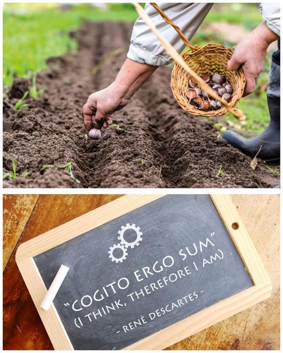 'Boeren voor de toekomst' en 'Pocketfilosofie'