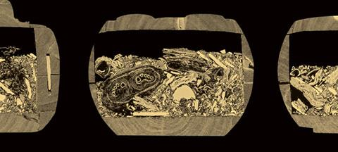 Cross section view of Egyptian coffin