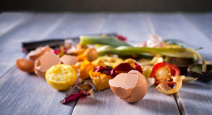 Food scraps on table