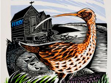 Walberswick Curlew by Jeremy James.