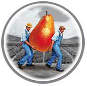 fruitguys logo