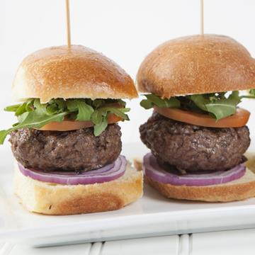 Two bison sliders