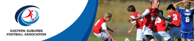 Eastern Suburbs Football Association Newsletter