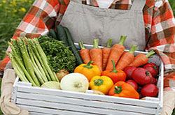 Picture of: Vegtables in a basket.