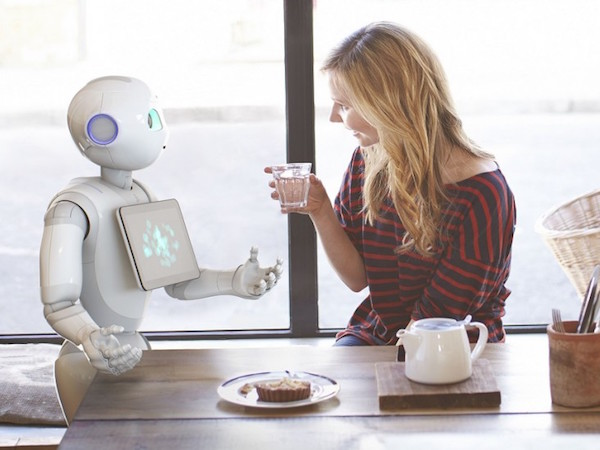 Why, Robot: Do Android Companions Really Have a Future?