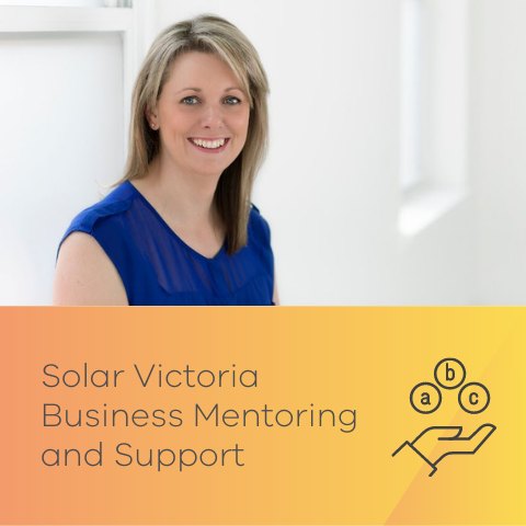 Business mentoring and support