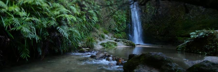 Te Ana Falls by Oliver, Year 6, Eskdale School