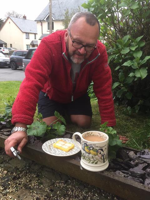 Emma Bridgewater Garden birds 1pt mug