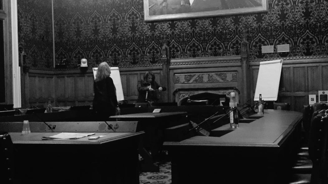 Pamela Nathan prepaing to present at the House of Lords